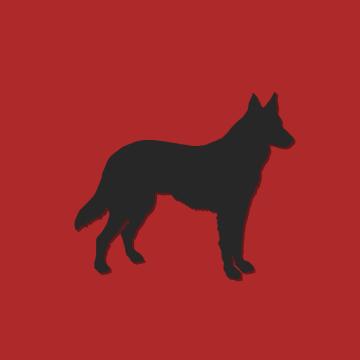 Bewaking met hond